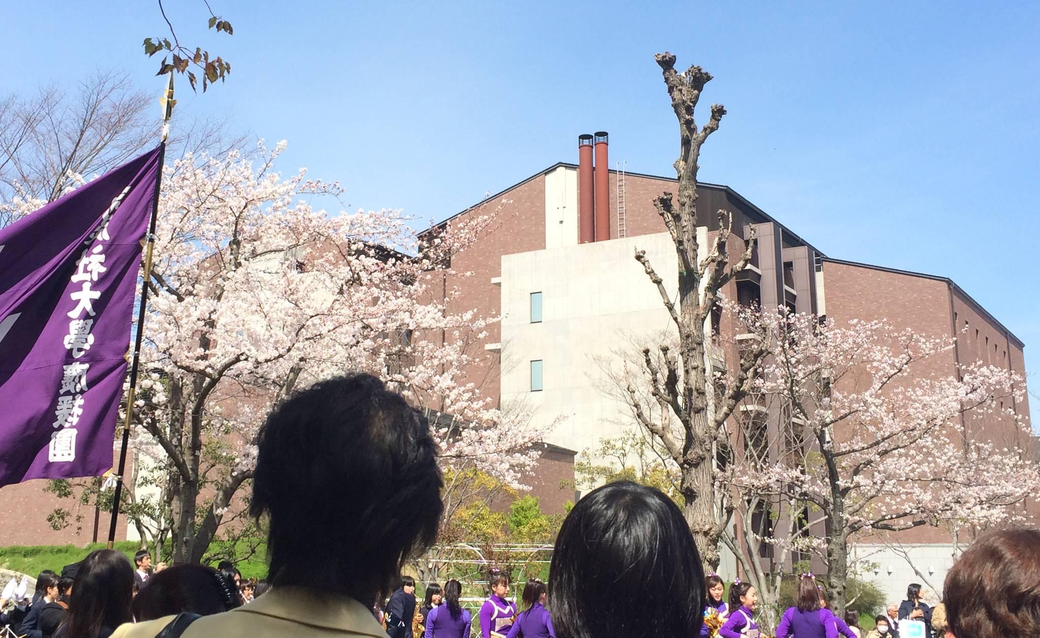 가람 상은 왜 일본으로 유학 오게 된 거예요?