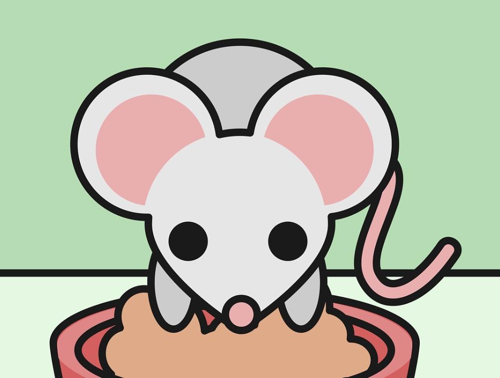 손톱 먹은 들쥐 - 도플갱어?