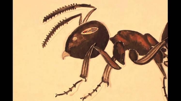 뇌를 조종하는 기생충의 습격